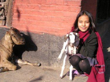 ネパール旅行の予算はどのくらい必要?どこで両替するのがお得なの?