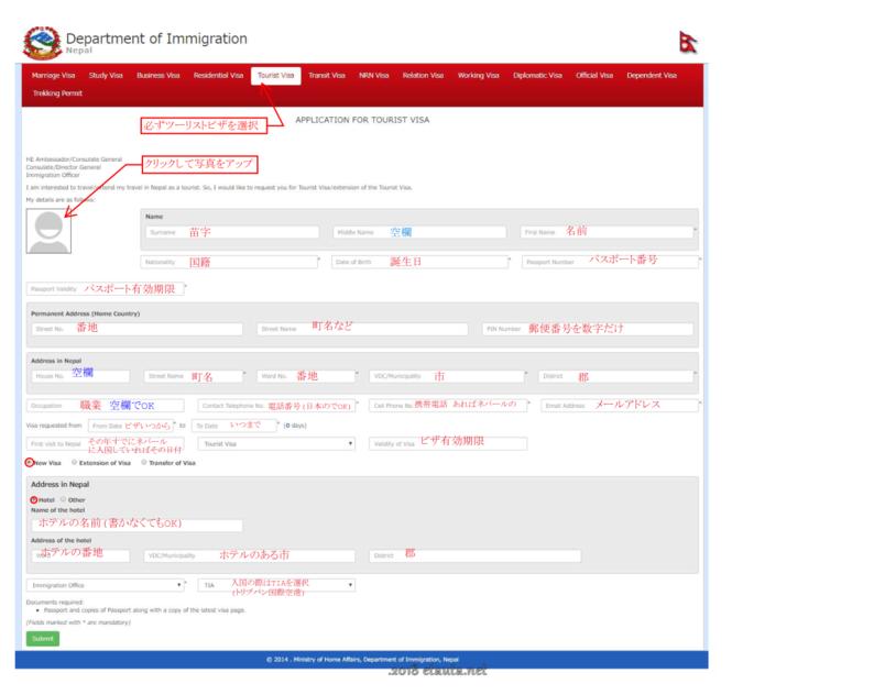 online-visa-form