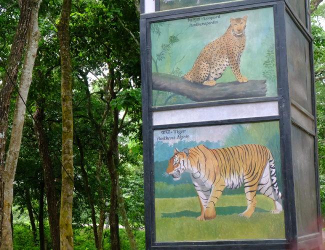 Chaitwan National Park gate