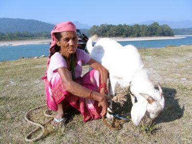 ネパールを訪れる時おすすめなお土産は?【ネパール人へのお土産6選】