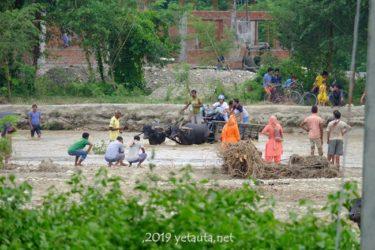 まだ日本人が知らないネパールの秘境「マディ」に行くべき5つの理由 Madi in Chitwan,Nepal.