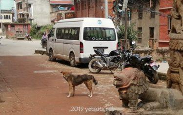 in kathmandu city